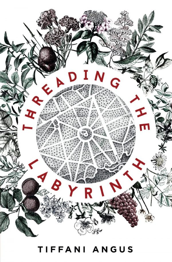 Cover image for Threading the Labyrinth by Tiffani Angus